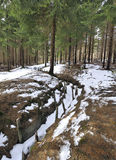 Preserved trenches from World War 1 Stock Photos