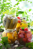 Preserved vegetables. Preserved tomatoes,cucumbers,peppers and patisson in jars Royalty Free Stock Photos