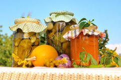 Preserves. Assorted homemade preserves with blue sky as a background Royalty Free Stock Photography