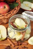 Preserving apples Royalty Free Stock Photo