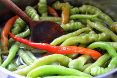Preserving peppers. Process of preserving red and green peppers Stock Photos