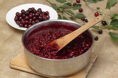 Preserving sour cherries Royalty Free Stock Photo