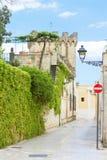 Presicce, Apulien - Efeu, der auf den Wänden eines alten Schlosses wächst lizenzfreies stockbild
