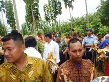 President Jokowi Stock Image