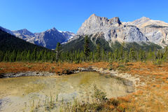 President Range in Emerald Lake, Yoho National Park, Canada Stock Afbeeldingen