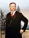 president roosevelt theodore Arkivfoton