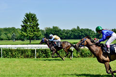President's Day at the track Partenice, race for 3-year-old horses only group III in Wroclaw on Juni 8, 2014. Stock Photo