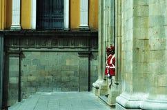Presidentiële Boliviaanse wachten Stock Fotografie