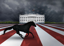 Presidential Dark Horse Royalty Free Stock Photography