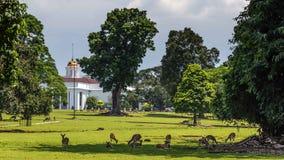Presidentpalatset av Republiken Indonesien i Bogor som är västra royaltyfria bilder