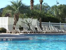 Presidenze del lounger della piscina dell'hotel Immagini Stock Libere da Diritti