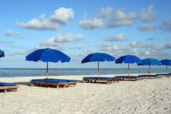 Presidenze di spiaggia blu Immagini Stock Libere da Diritti