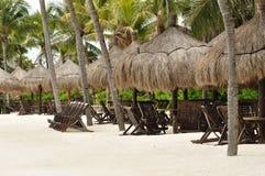 Presidenze di spiaggia sotto le palme sulla spiaggia tropicale Immagine Stock