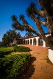 Presidio公园曲拱 库存图片