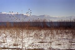 prespa λιμνών Στοκ φωτογραφίες με δικαίωμα ελεύθερης χρήσης