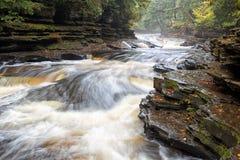 Presque-Insel-Fluss auf Misty Autumn Morning Stockbilder