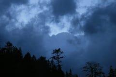 Presque obscurité Image libre de droits