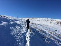 Presque sur le dessus d'une montagne photo libre de droits