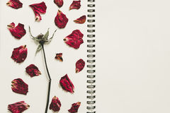 Press dried rose flower petals, on notebook page with copy space, vintage tone Stock Photos