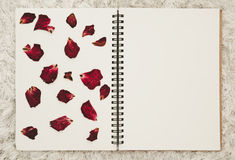 Press dried rose flower petals on photo album with copy space Stock Images