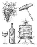 Press for grapes sketch corkscrew wine bottle and glass in vintage style, engraved woodcut illustration Royalty Free Stock Photos