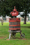 Press the grapes for wine production. Royalty Free Stock Images