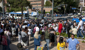 Press and Michael Jackson Fans Gather. A large crowd of fans gather in remembrance of Michael Jackson in front of the UCLA Medical Center shortly after he passed Royalty Free Stock Images