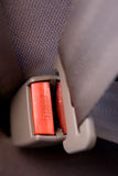 Press Seatbelt Detail Stock Image
