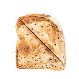 Press toasted sandwich isolated. Press toasted sandwich panini isolated over the white background royalty free stock photography