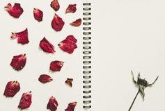Press torkade rosa blommakronblad, på sidan för anmärkningsboken, med kopieringsutrymme, tappningsignalen Royaltyfri Fotografi