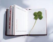 pressande leaf för 4 växt av släkten Trifolium Arkivfoto