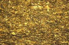 Pressande torrt tobakblad Royaltyfri Bild