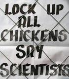Presse de grippe d'oiseau Photo stock