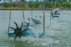 Presse de turbine pour l'étang de crevette Photos libres de droits