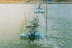 Presse de turbine pour l'étang de crevette Photos stock