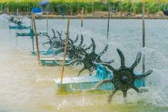 Presse de turbine pour l'étang de crevette Image stock