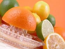 Presse-fruits de citron Photographie stock
