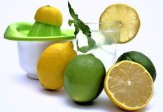 Presse-fruits de citron avec le jus de citron et de limette avec le menta naturel Images libres de droits