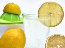 Presse-fruits de citron avec les citrons organiques du côté Photo libre de droits