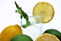 Presse-fruits de citron avec les citrons organiques du côté Photo stock