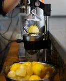 Presse-fruits de citron en café photo libre de droits
