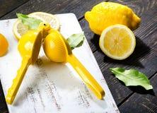 Presse-fruits de citron et citron frais sur le conseil en bois foncé Photographie stock libre de droits