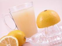 Presse-fruits de citrons Image libre de droits