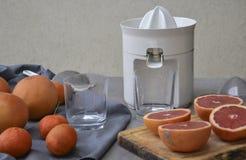 Presse-fruits ou presse-fruits et fruits sur le fond gris photographie stock libre de droits