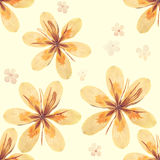Pressed and dried flowers pattern Stock Photos