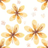 Pressed and dried flowers pattern Royalty Free Stock Images