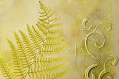 Pressed fern leaf Stock Images