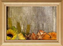 Pressed Flower Mixed Medium. Retro Image Still Life with fruits and flowers in a frame. Pressed Flower in a Mixed Medium art background. Extreme texture and royalty free illustration