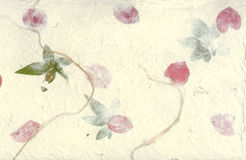 Pressed Flower Paper Background. With petals and leaves Royalty Free Stock Photography