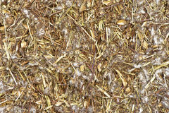 Pressed Hay Royalty Free Stock Photography